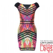 VIEW ALL PETITE HEIGHT MINI DRESSES